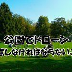 公園でドローン飛行【注意しなければならないこと】